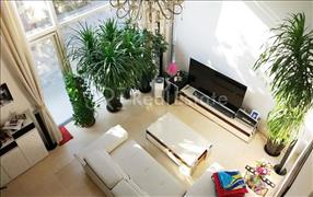 Orchid Garden,4居/280平米/ 租金43000元/月